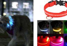 Collare SafeLight con luce LED per Cani: funziona davvero? Recensioni, Opinioni e dove acquistarlo