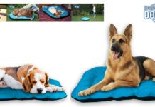 Dog Bed: lettino morbido per cani e gatti con rivestimento antibatterico, funziona davvero? Caratteristiche, opinioni e dove comprarlo